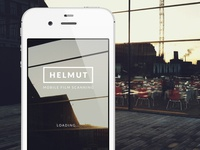 Helmut loading screen