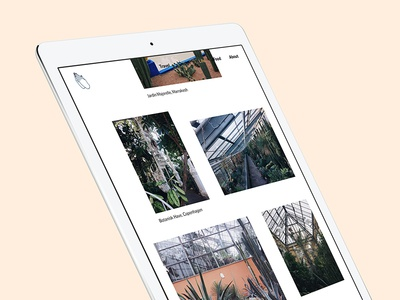 Blog by Katarina Fegraeus ipad photography layout website web design blog