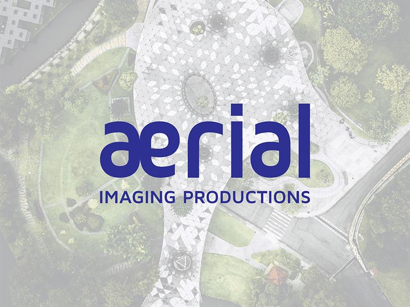Aerial - drone service provider drone logo
