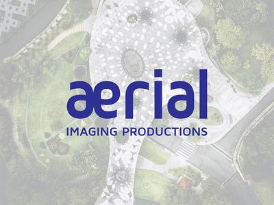 Aerial - drone service provider