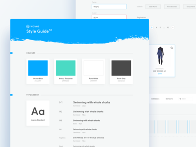 Online Store for Surfers - Style Guide