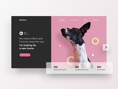 Dogs Adoption - Landing Page pet animal shelter adoption dog ux design interface web ui