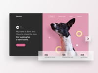 Dogs Adoption - Landing Page