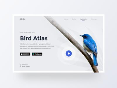 Bird Atlas - App Teaser Landing Page figma atlas landing page teaser encyclopedia bird animal typography design minimal app ux web interface ui