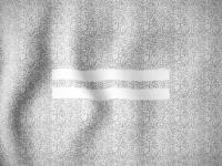 WIP-flag