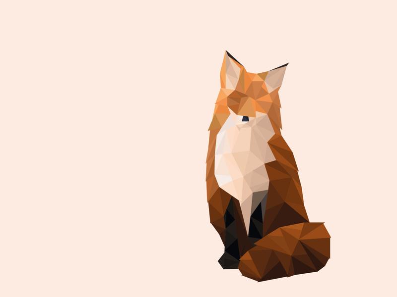 Fox fox low poly lowpoly illustration design