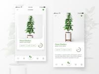 Daily UI Challenge #5 - Flowers App