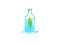 Bottle & Leaf