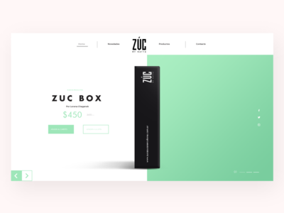 Zuc Landing page Concepto