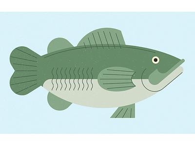 Fish nature simple illustration fish