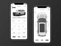 Audi remote application