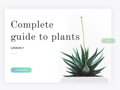 Complete guide to plants houseplants green design clean simple web design app nature plants ux ui card
