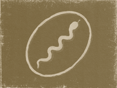 Ancient Snake