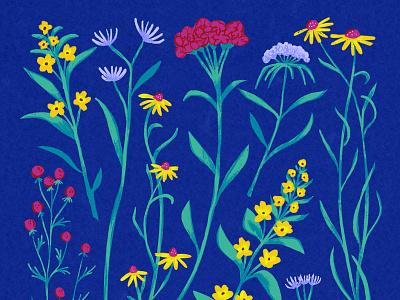 Wildflowers wildflowers flowers surface design floral art botanical art artwork art procreate digital painting digital illustration digital art illustration pattern