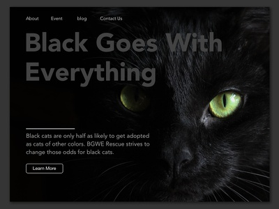 Daily UI 003 Landing Page (above the fold) pet rescue xd adobexd 003 daily ui ui cat black cat