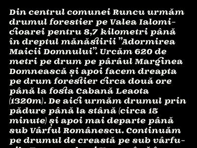 OTC Riga Ante-release fonts glyph font design character typeface font typedesign type design typography type