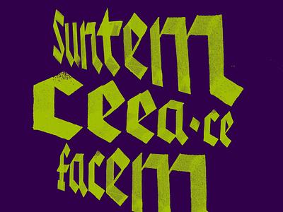 SCCF 1 letter calligraphy custom lettering lettering illustration typography type