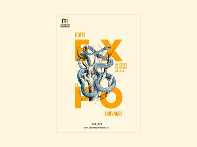 Poster #1 - Snake design scientific illustration animal museum print scientific snake poster design poster photoshop