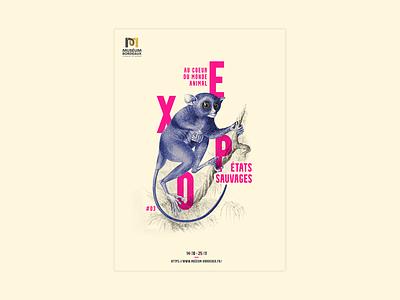 Poster #3 - Tarsius photoshop print scientific illustration scientific poster poster design museum animal design