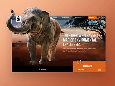 Digital Campaign Hub for WWF animals resposive digital design wwf user experience webdesign ux design ui design