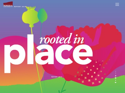 Report 2019 ui branding colour illustration vector design memorial university semplice