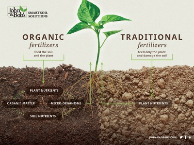 Soil Infographic organic fertilizer gardening infographic roots soil plant