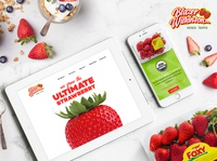 Blazer Wilkinson Website