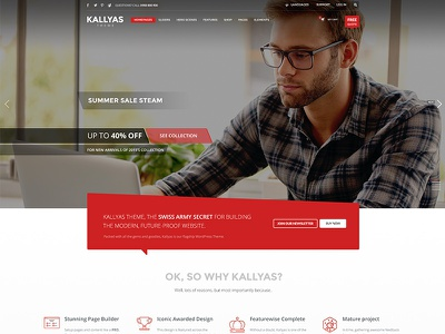 Kallyas WordPress Theme dailyui interface website ready retina responsive 2016 best builder page multipurpose wordpress