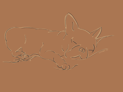 Boogie applepencil ipadpro draweveryday handdrawn frenchie puppy dog minimal procreate app illustration