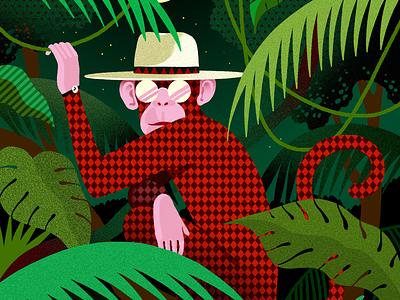 Chango Marango monkeys cover editorial jungle fashion monkey design illustration texture