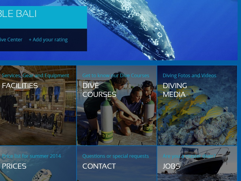 Divearth - Dive Center Profile dive diving blue ocean godive bubble bobble