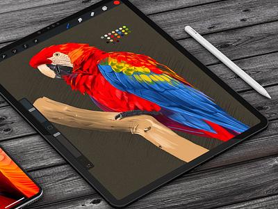 Parrot Digital Sketch Practice bird illustration psd photoshop mockup ipad work in progress wip sketch painting bird parrot digital painting digital art art