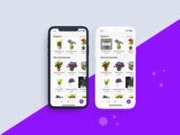 Decorative Flowers Buying App Concept