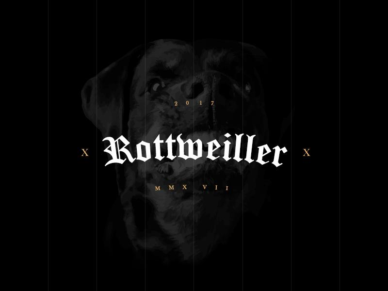 Rottweiller rottweiler dog lettering identity branding simplicity logo