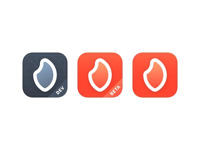 Bonfire App Icons apple ios gradient flame beta grid dev app icon app