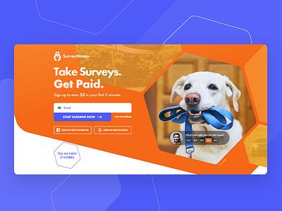 SurveyHoney web design and development website development logo branding website design website design