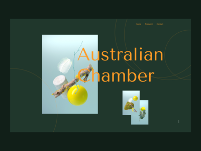 Australian Chamber Orchestra redesign