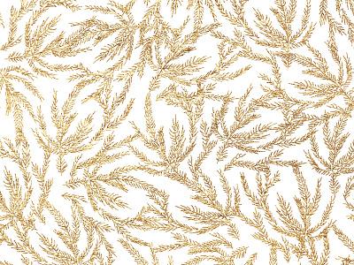 Gold Coral Ferns overlay ornate summer winter gold pine illustration leaves sea coral pattern
