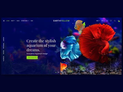 Fish Products E-Commenrce creative website themeforest ecommence creative  design