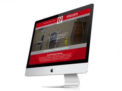 Rockwell Disaster Website design website