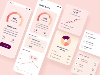 Personal finance and credit score mobile app ui ux finance app spending bank ui ux finance mobile