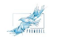 Promodel Logo Concept 1
