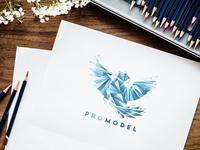 Promodel Logo Concept 3