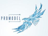 Promodel Logo Concept 4