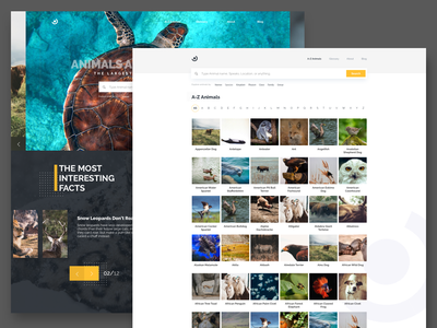 Landing and inner page Shot - Daily UI #003 ui ux web interaction webdesign landing page homepage animals search slider carousel explore hero dailyui