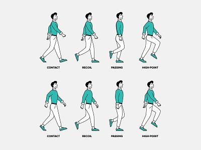 Walk Cycle 🚶🏻♂️ line cartoon phases walk cycle walk walking character animation video