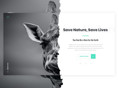 Save Nature Homepage Concept inspiration website webdesign ui typography minimal interface design clean case study oswald poppins
