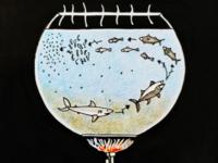 Warming marine ecosystem