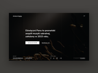 Music band website website minimal flat ux ui branding web design