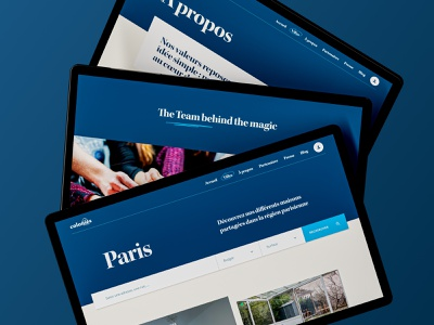 Live colonies - Various pages typogaphy lifestyle interface immobilier real estate realestate blue beige minimal clean website ui design web